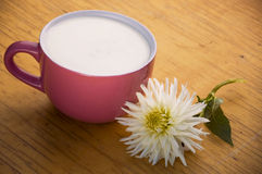Cuvette avec du lait et la fleur Photo stock