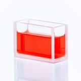 Cuvette avec le liquide rouge Photographie stock libre de droits