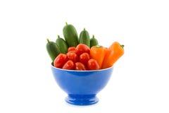 Cuvette avec les légumes colorés Image libre de droits