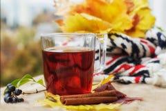 Cuvette chaude de thé photographie stock