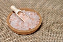 Cuvette complètement de sel rose de l'Himalaya image libre de droits