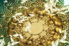 Cuvette d'or avec des pétales Image libre de droits