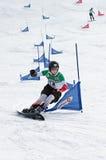 Cuvette d'Européen de Snowboard Photos libres de droits