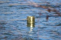 cuvette dans l'eau Image stock