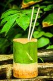 Cuvette dans le bambou images stock