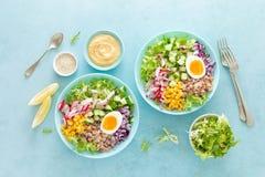 Cuvette de Bouddha avec l'oeuf à la coque, le riz et la salade végétale de la laitue, du radis, du concombre, du maïs, de l'o photographie stock