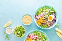 Cuvette de Bouddha avec l'oeuf à la coque, le riz et la salade végétale de la laitue, du radis, du concombre, du maïs, de l'o image stock