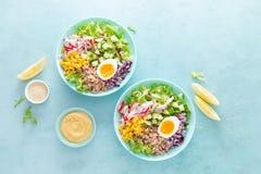 Cuvette de Bouddha avec l'oeuf à la coque, le riz et la salade végétale de la laitue, du radis, du concombre, du maïs, de l'o photos stock