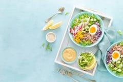 Cuvette de Bouddha avec l'oeuf à la coque, le riz et la salade végétale de la laitue, du radis, du concombre, du maïs, de l'o image libre de droits