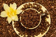 Cuvette de café avec des haricots - première vue photographie stock