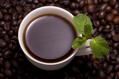 Cuvette de café avec la menthe Photo libre de droits
