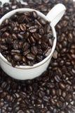 cuvette de café d'haricot images libres de droits
