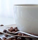 Cuvette de Coffe et haricots de coffe Photographie stock