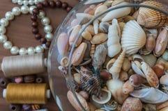 Cuvette de coquillages avec des perles Images libres de droits