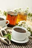 Cuvette de détente de thé de fruit photographie stock libre de droits