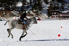 Cuvette de polo de l'hiver Photos libres de droits