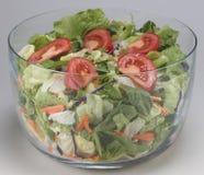 Cuvette de préparation de salade Photographie stock libre de droits