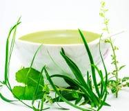 Cuvette de purée de fines herbes - kanji Photographie stock libre de droits