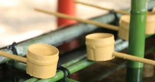 Cuvette de purification au tombeau de Hie à Tokyo clips vidéos