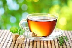 Cuvette de thé. Image libre de droits