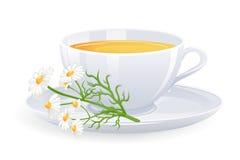 Cuvette de thé avec des fleurs de camomille Image stock