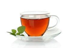 Cuvette de thé avec des lames de mélisse photographie stock