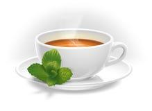 Cuvette de thé avec la menthe Photographie stock libre de droits