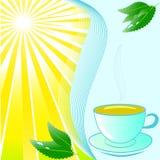 Cuvette de thé avec la menthe sur le beau fond ensoleillé Images stock