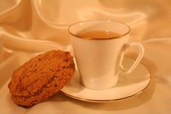Cuvette de thé avec le biscuit Photographie stock libre de droits