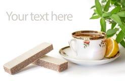 Cuvette de thé avec le citron Photographie stock libre de droits
