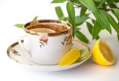 Cuvette de thé avec le citron Photographie stock