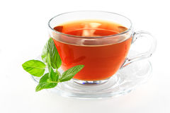 Cuvette de thé avec le congé en bon état Photo libre de droits