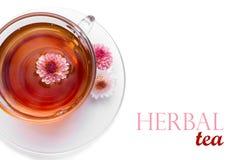 Cuvette de thé de fines herbes Image libre de droits