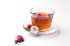 Cuvette de thé de fines herbes Photo stock