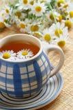 Cuvette de thé de fines herbes Photos libres de droits