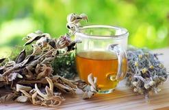 Cuvette de thé de fines herbes Photographie stock