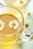 Cuvette de thé de fines herbes avec hcamomile Photographie stock