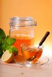 Cuvette de thé de fines herbes et de miel Photographie stock
