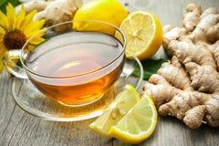 Cuvette de thé de gingembre Photos libres de droits