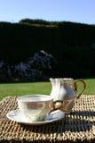 Cuvette de thé et cruche de lait Photos stock