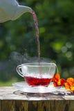 Cuvette de thé fruité image libre de droits