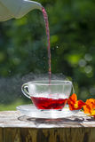Cuvette de thé fruité photos libres de droits