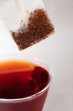 Cuvette de thé rouge de fruit Photos stock