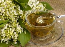 Cuvette de thé vert sur la toile de jute Photographie stock libre de droits