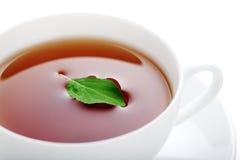 Cuvette de thé de fines herbes Image stock