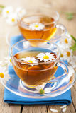 Cuvette de thé de fines herbes avec des fleurs de camomille Photos libres de droits