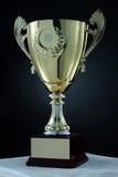 Cuvette de trophée Photo libre de droits