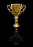 Cuvette de trophée Photos libres de droits
