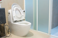 Cuvette des toilettes photo stock