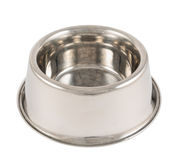 Cuvette en métal de chien d'animal familier d'isolement Images stock